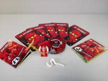 Lego Ninjago - Fangdam 9571